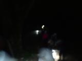 夜の森を歩く