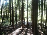 林業体験のはじまり