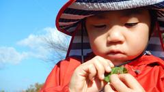 『バッタさん、草を食べて~。』『かわいいなぁ♪』