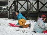 雪を集めて何かを作り始めました