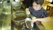 水を捨てたら、うわべにたまった土を取り出します。これが粘土質の土!