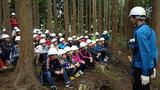 林業を知る