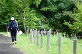 自然の中を歩く