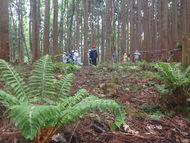 森の人たち
