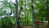 樹上の世界