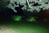 【昨日の写真】テントでおやすみなさい