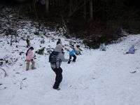 雪を求めて、森の奥へとやってきました