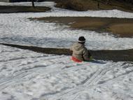 場所により雪のない所も