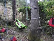 木の下のハンモックも休憩にはベストポイント