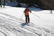 スキーヤー②