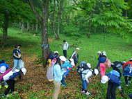 選択プログラム自然観察